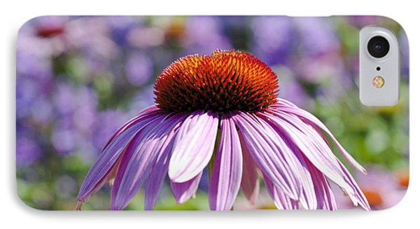 IPhone Case featuring the photograph Coneflower by Lana Enderle