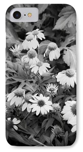 Coneflowers Echinacea Rudbeckia Bw Phone Case by Rich Franco