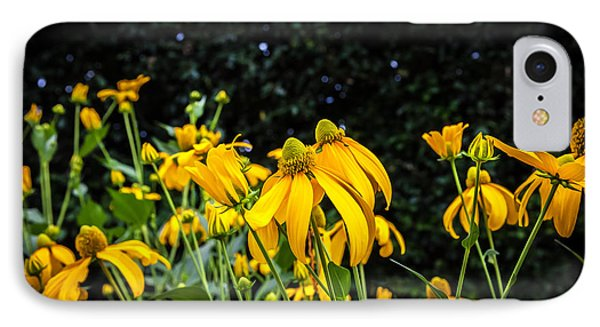 Coneflowers Echinacea Yellow Painted Phone Case by Rich Franco
