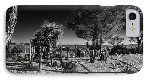 IPhone Case featuring the photograph Conejo Cactus by Ross Henton