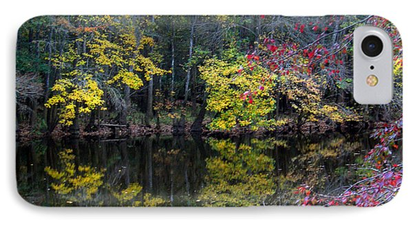 Congaree Swamp Phone Case by Skip Willits