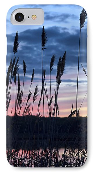 Connecticut Sunset With Reeds Series 4 IPhone Case by Marianne Campolongo