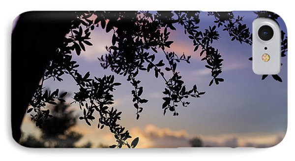 Contemplation IPhone Case by Maria Robinson