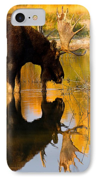 IPhone Case featuring the photograph Contemplative Moose by Aaron Whittemore