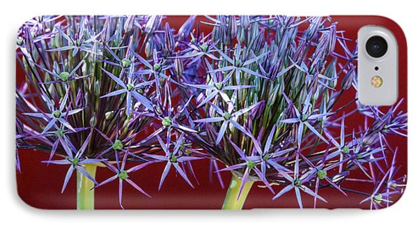 IPhone Case featuring the photograph Flowering Onions by Roselynne Broussard