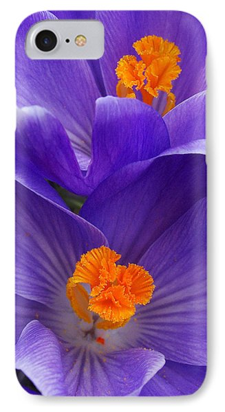 Contrasting Colors Phone Case by Kathi Mirto