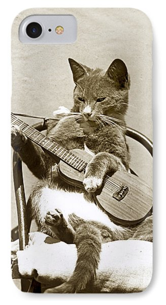 Cool Cat Playing A Guitar Circa 1900 Historical Photo By
