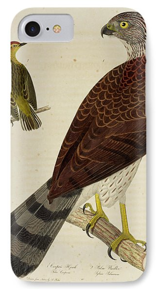 Cooper's Hawk And Palm Warbler IPhone Case by British Library