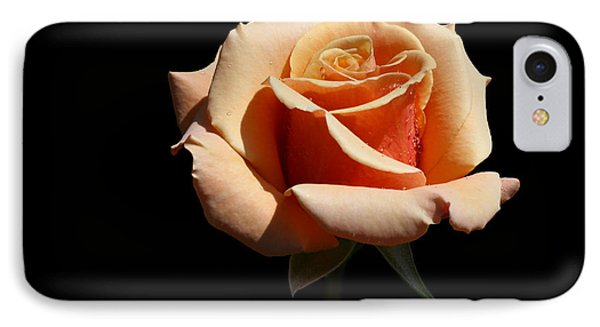 IPhone Case featuring the photograph Coral Cup by Doug Norkum