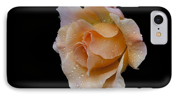 IPhone Case featuring the photograph Coral Cutie by Doug Norkum