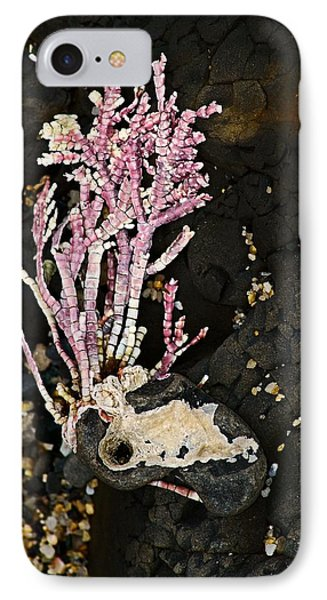 Coral II  IPhone Case by Bob Wall