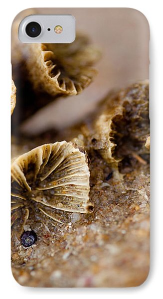 Coral In The Sand IPhone Case by Carole Hinding