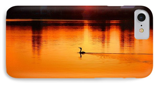 Cormorant At Sunset IPhone Case by Pamela Blizzard