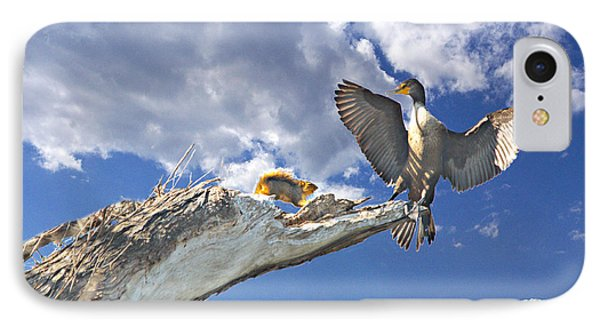 Cormorant Close Encounter With Tree Squirrel 1 Phone Case by Roy Williams