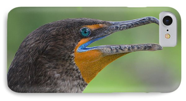 Cormorant Close Up Phone Case by Jodi Terracina