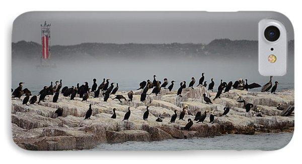 Cormorant Island IPhone Case by Debra Martz