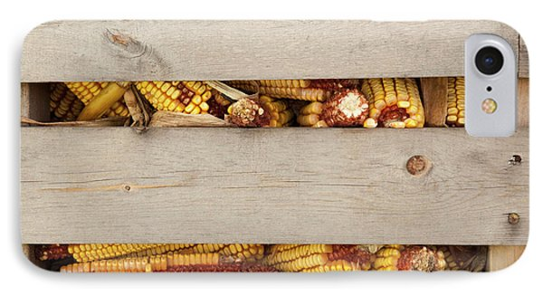 Corn Cobs In Corn Crib At Indiana State IPhone Case by Jaynes Gallery