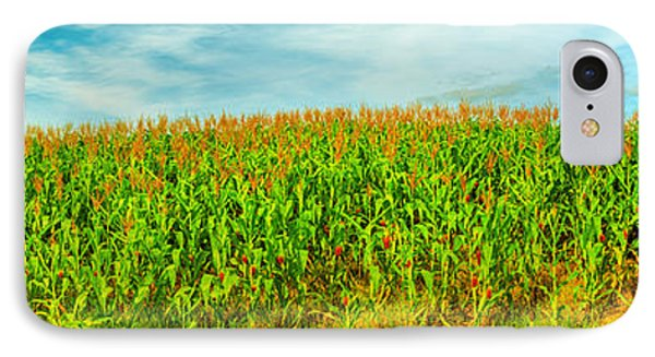 Corn Crop Phone Case by MotHaiBaPhoto Prints