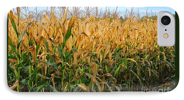 Corn Harvest IPhone Case by Terri Gostola