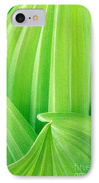 IPhone Case featuring the photograph Corn Lily Leaf Detail Yosemite Np California by Dave Welling