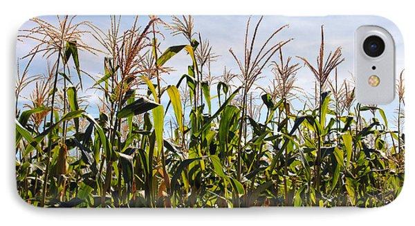 Corn Production Phone Case by Carlos Caetano