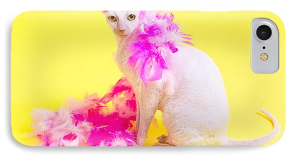 Cornish Rex IPhone Case by Verena Matthew