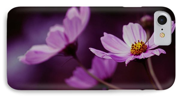 IPhone Case featuring the photograph Cosmo After Glow by Kay Novy