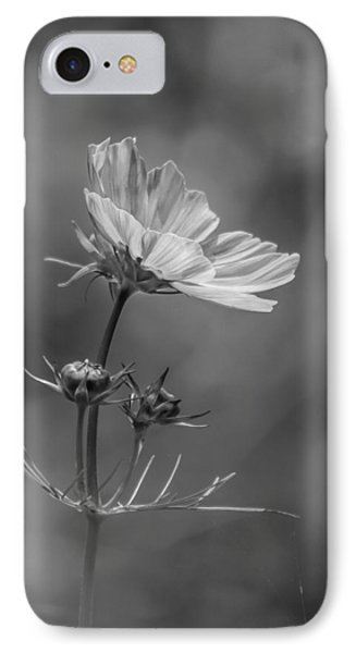 IPhone Case featuring the photograph Cosmo Flower Reaching For The Sun by Debbie Green