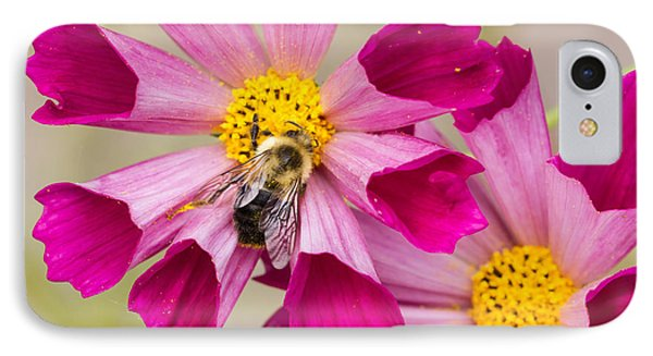 Cosmos And Bee IPhone Case