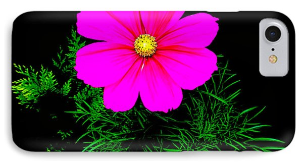 Cosmos Pink On Black 2 IPhone Case
