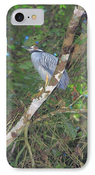 Costa Rica Heron IPhone Case