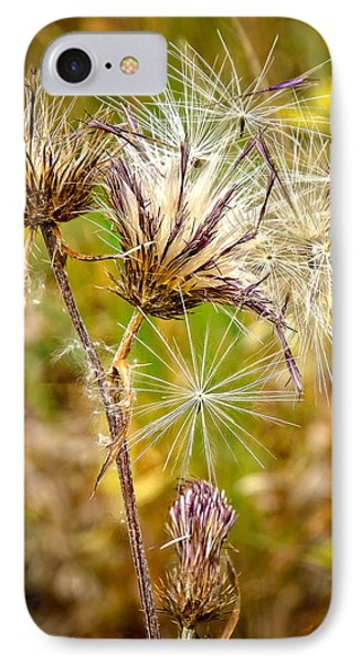 IPhone Case featuring the photograph Cotten Grass by Jim Thompson