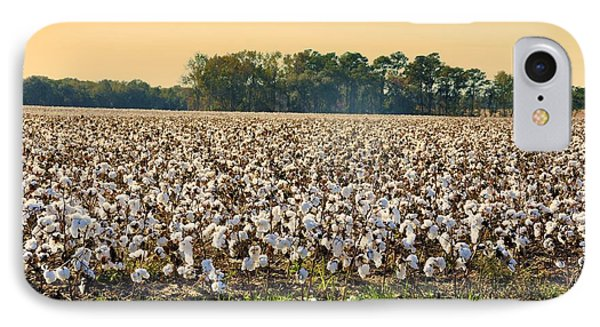 Cotton Fields Back Home IPhone Case by Jan Amiss Photography