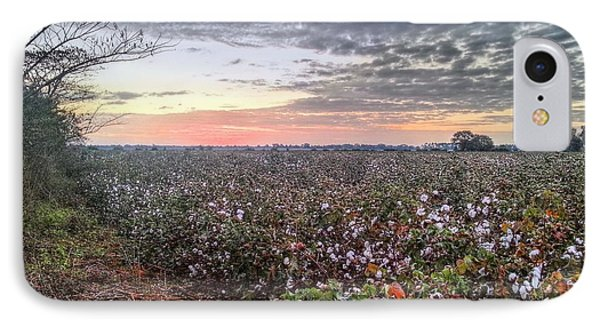 Cotton Sunrise  IPhone Case by JC Findley