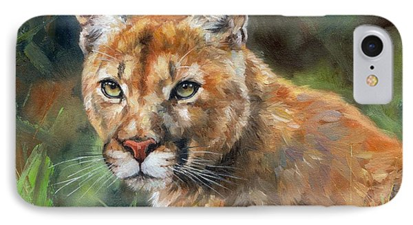 Cougar IPhone Case by David Stribbling