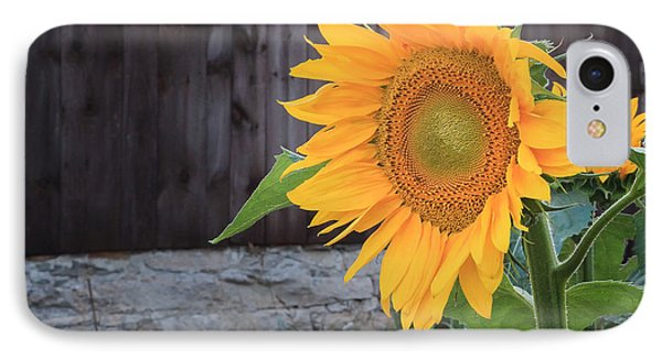Country Flower Square IPhone Case by Bill Wakeley