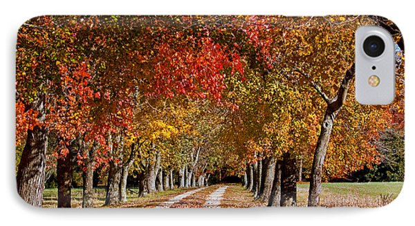 IPhone Case featuring the photograph Country Lane In Autumn by Jerry Gammon