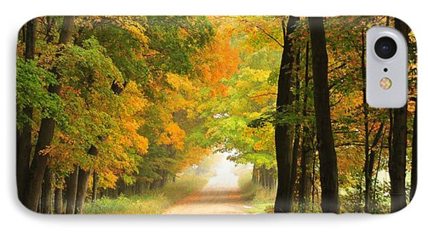 IPhone Case featuring the photograph Country Road In Autumn by Terri Gostola
