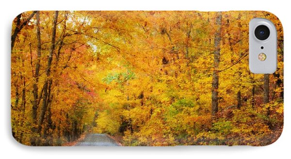 Country Road In Fall IPhone Case