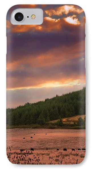 Country Sunlight IPhone Case