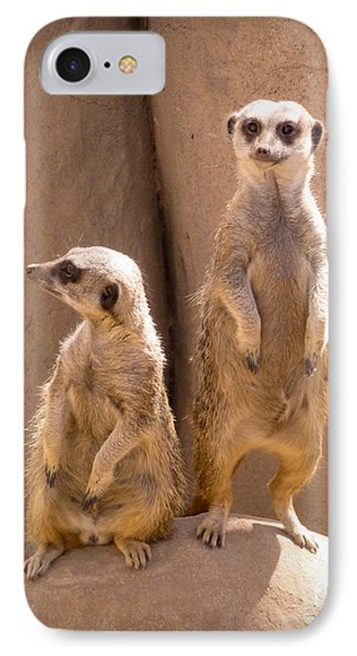 Couple Of Meerkats IPhone Case by Methune Hively