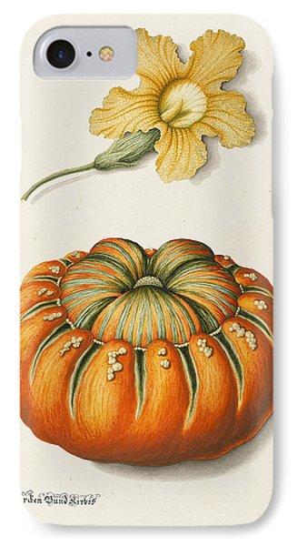 Courgette And A Pumpkin IPhone Case by Joseph Jacob Plenck