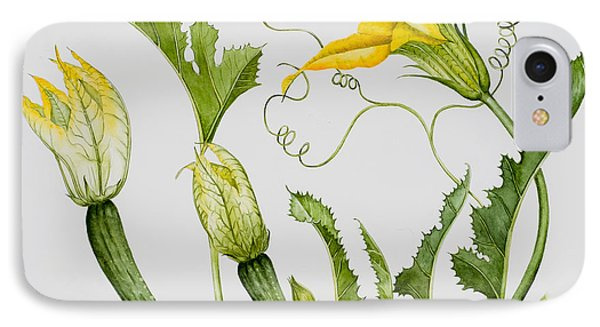 Courgettes IPhone Case by Sally Crosthwaite
