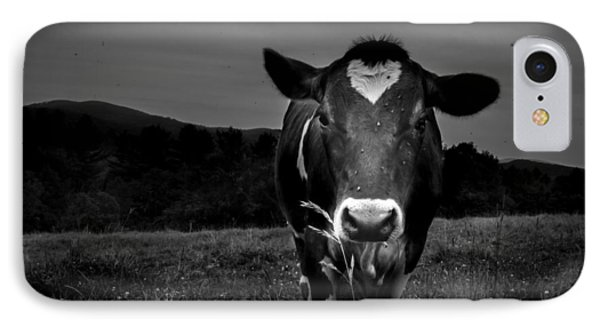 Cow IPhone Case by Bob Orsillo
