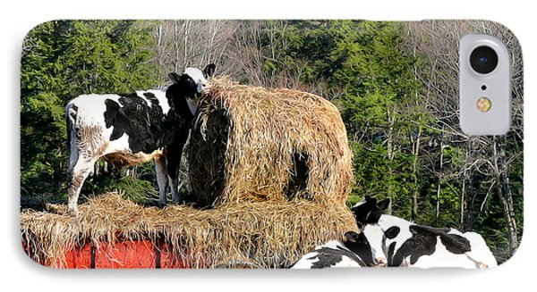 Cow Country Buffet Phone Case by Christina Rollo