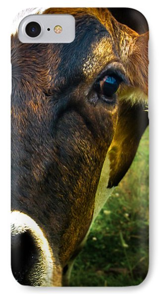 Cow Eating Grass Phone Case by Bob Orsillo