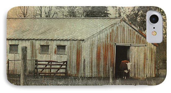 Cow IPhone Case by Gothicrow Images