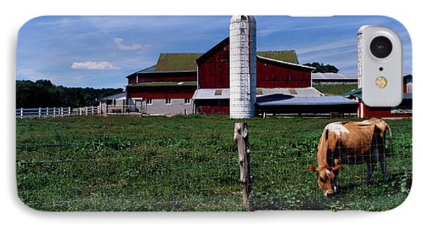 Cow Grazing In A Farm, Amish Country IPhone Case by Panoramic Images