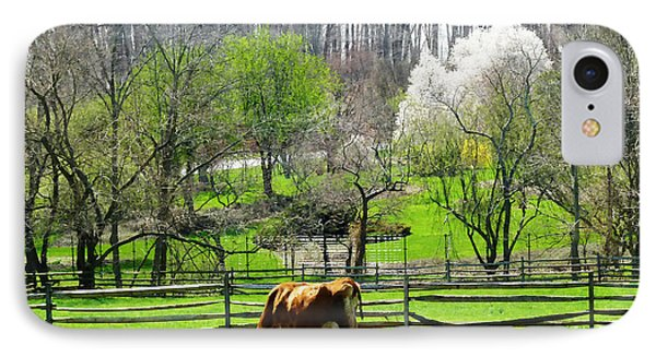 Cow Grazing In Pasture In Spring Phone Case by Susan Savad