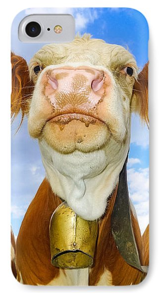 Cow Looking At You - Funny Animal Picture IPhone Case by Matthias Hauser